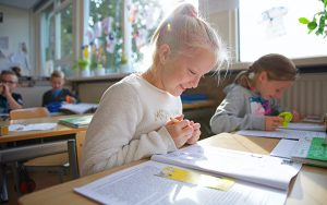 Basisschool St. Franciscus Weiteveen - Onze organisatie